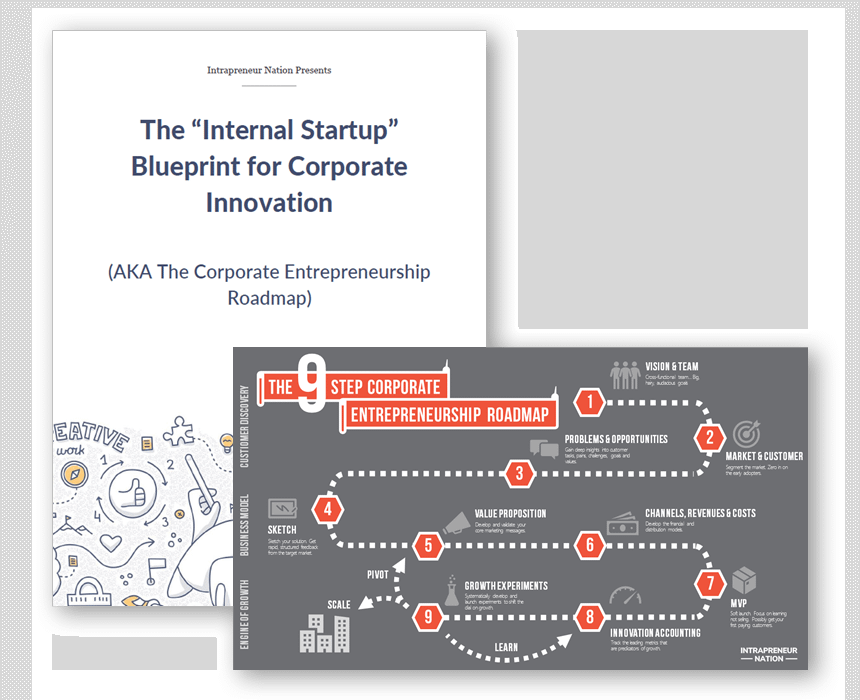 The Internal Startup Blueprint for Corporate Innovation cover